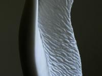torso01